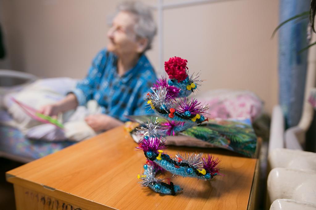 Новогодних елок хоровод с региональным фондом «Родные Острова».